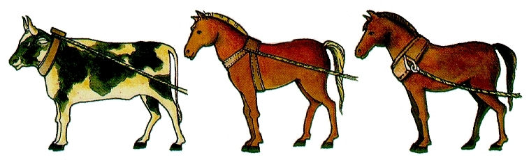 Differenza tra il vecchio collare del cavallo al centro e il nuovo tipo di collare o giogo di spalla del cavallo e del bue a sinistra e a destra.